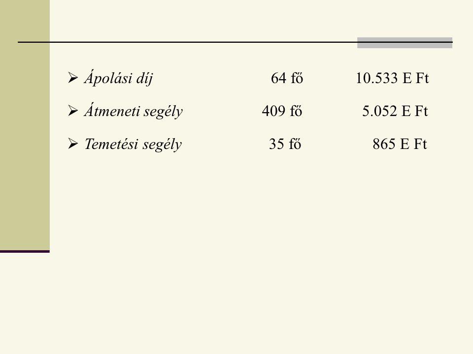 Ápolási díj 64 fő 10.533 E Ft Átmeneti segély 409 fő 5.052 E Ft.