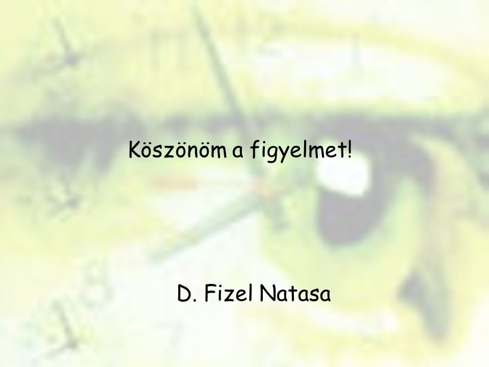 Köszönöm a figyelmet! D. Fizel Natasa