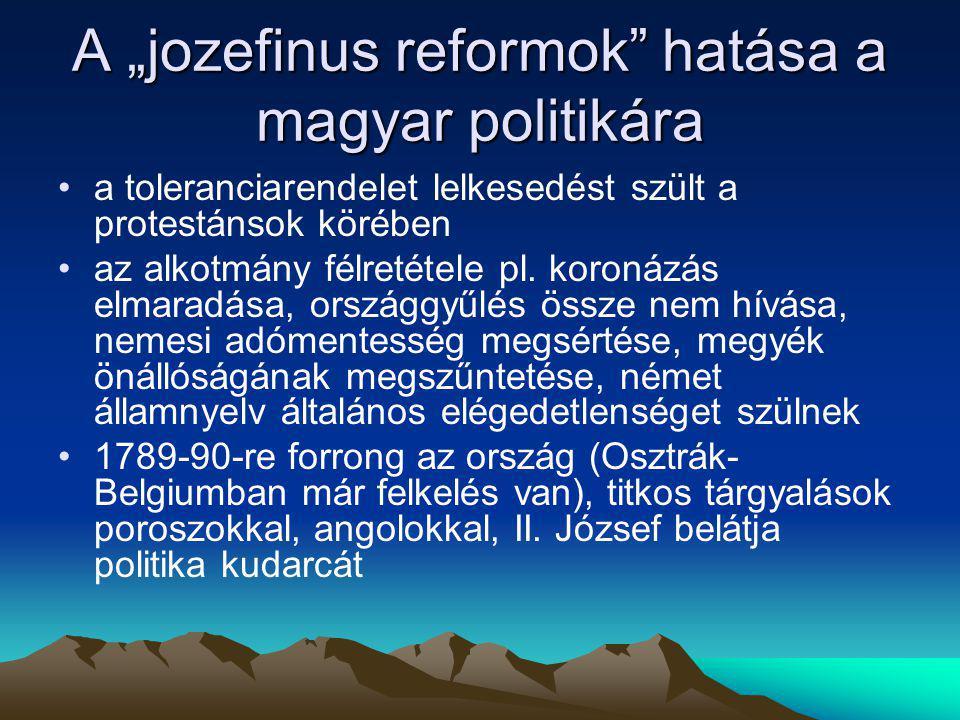 """A """"jozefinus reformok hatása a magyar politikára"""