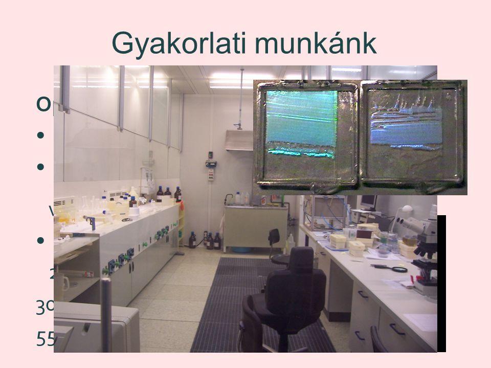 Gyakorlati munkánk Opál előállítása Üveglapok kezelése