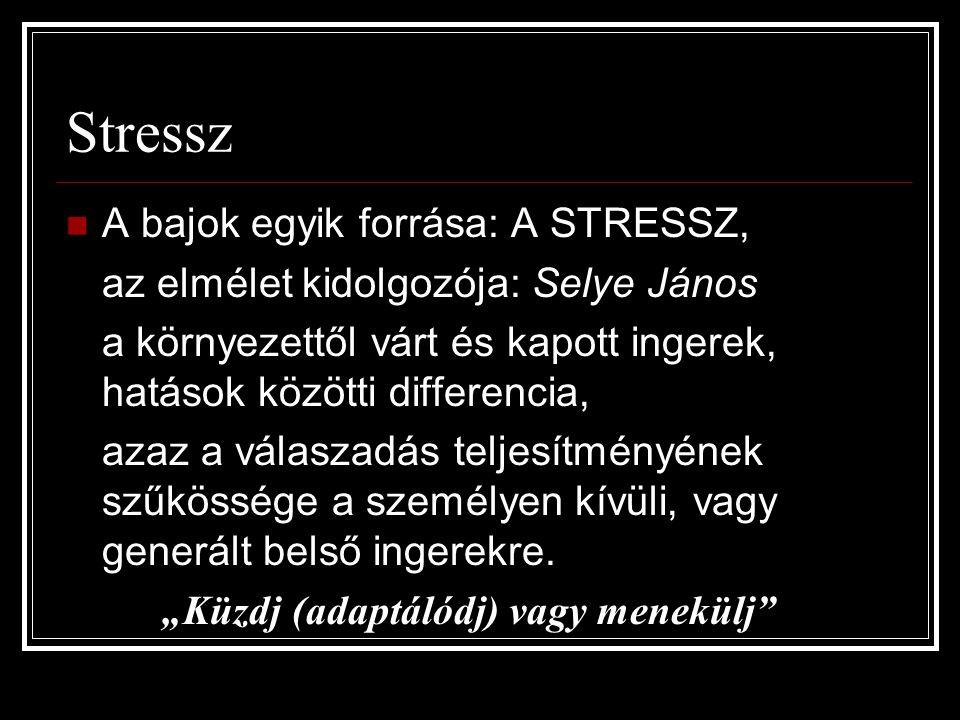 Stressz A bajok egyik forrása: A STRESSZ,