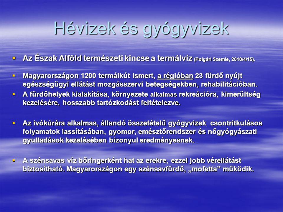 Hévizek és gyógyvizek Az Észak Alföld természeti kincse a termálvíz (Polgári Szemle, 2010/4/15).