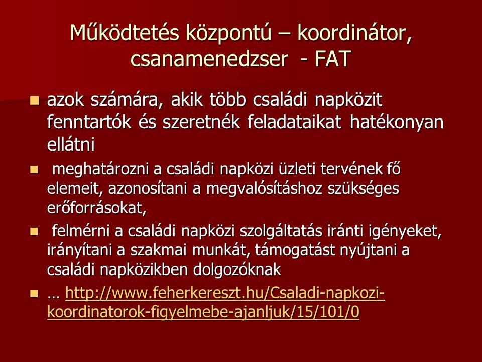 Működtetés központú – koordinátor, csanamenedzser - FAT