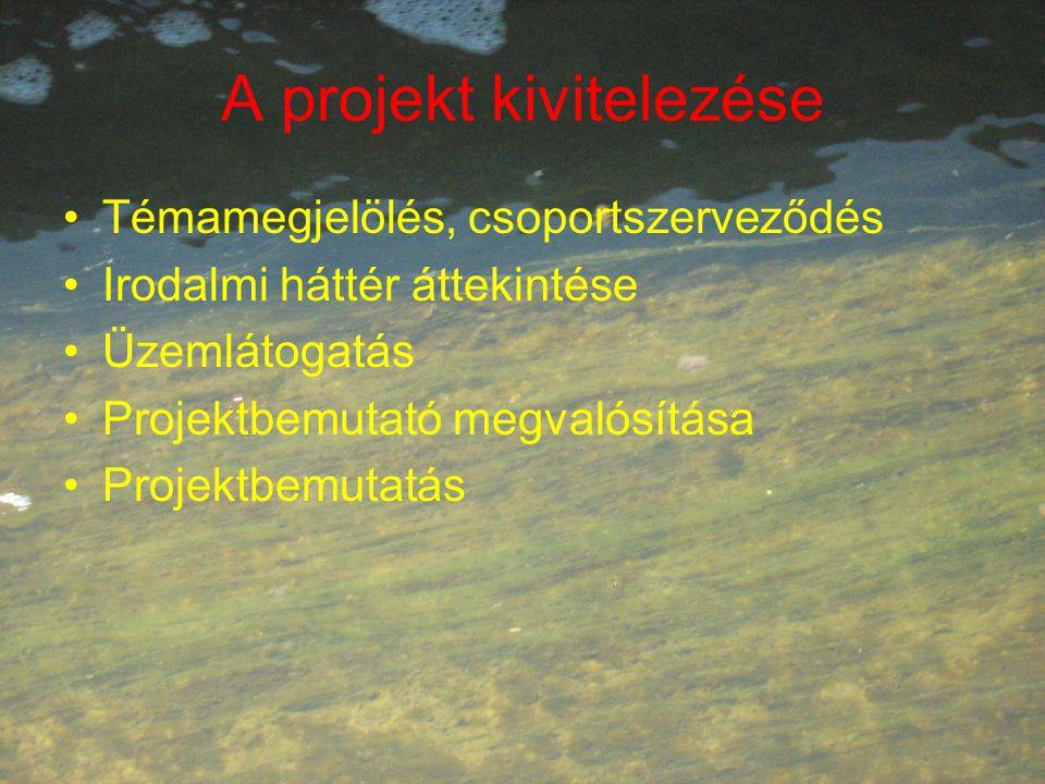 A projekt kivitelezése