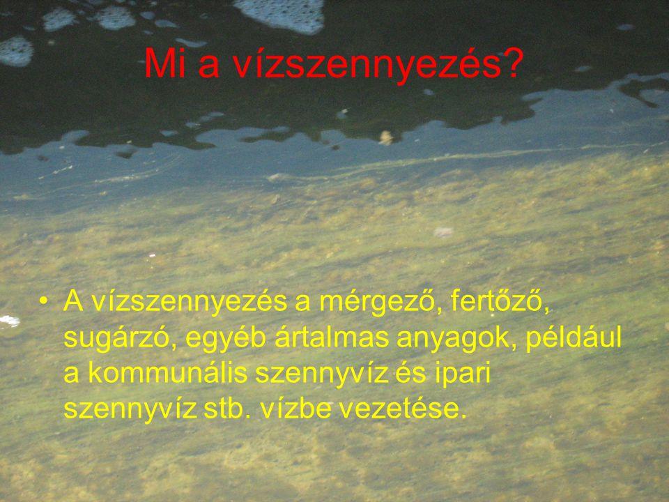 Mi a vízszennyezés