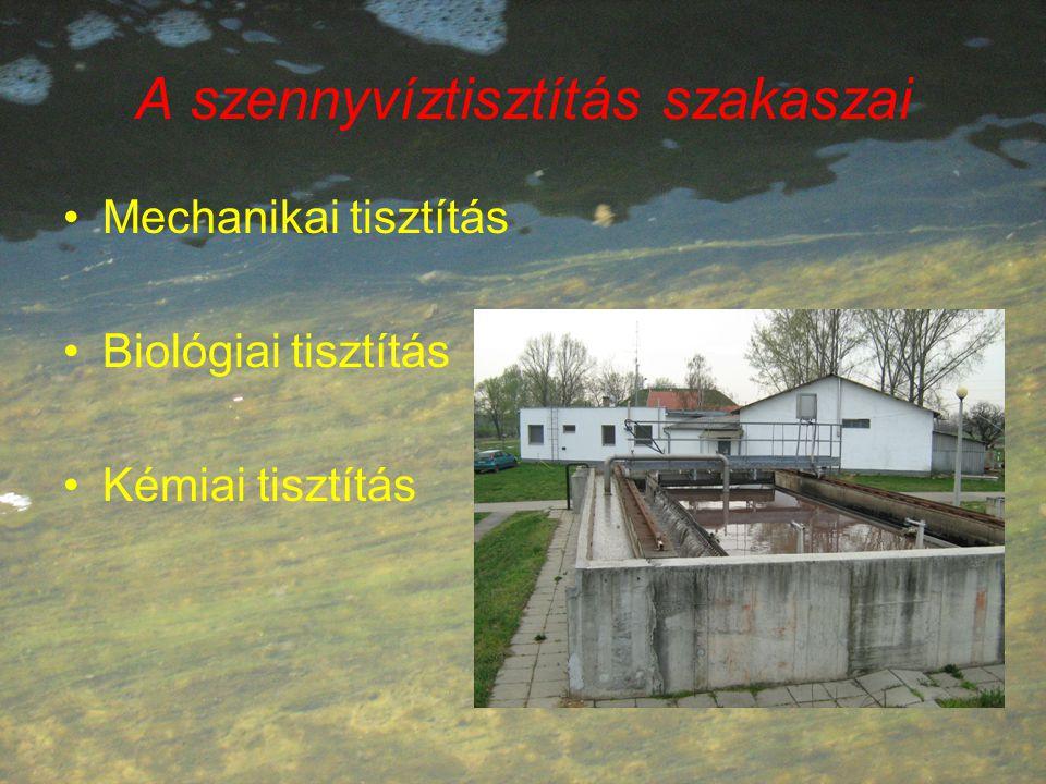 A szennyvíztisztítás szakaszai