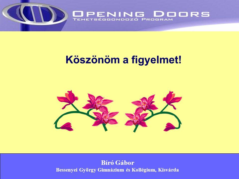 Bíró Gábor Bessenyei György Gimnázium és Kollégium, Kisvárda