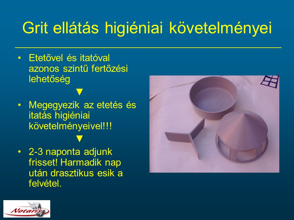 Grit ellátás higiéniai követelményei