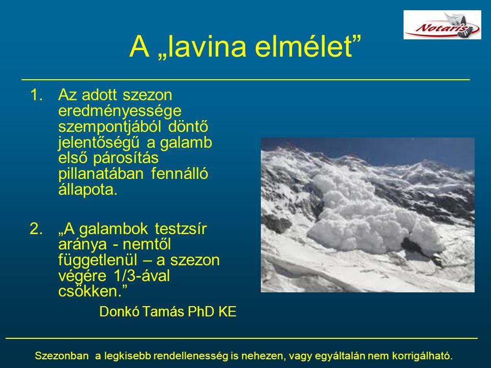 """A """"lavina elmélet Az adott szezon eredményessége szempontjából döntő jelentőségű a galamb első párosítás pillanatában fennálló állapota."""