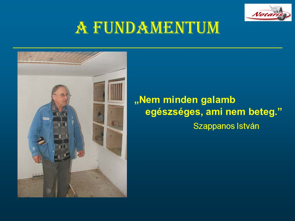 """A fundamentum """"Nem minden galamb egészséges, ami nem beteg. Szappanos István"""