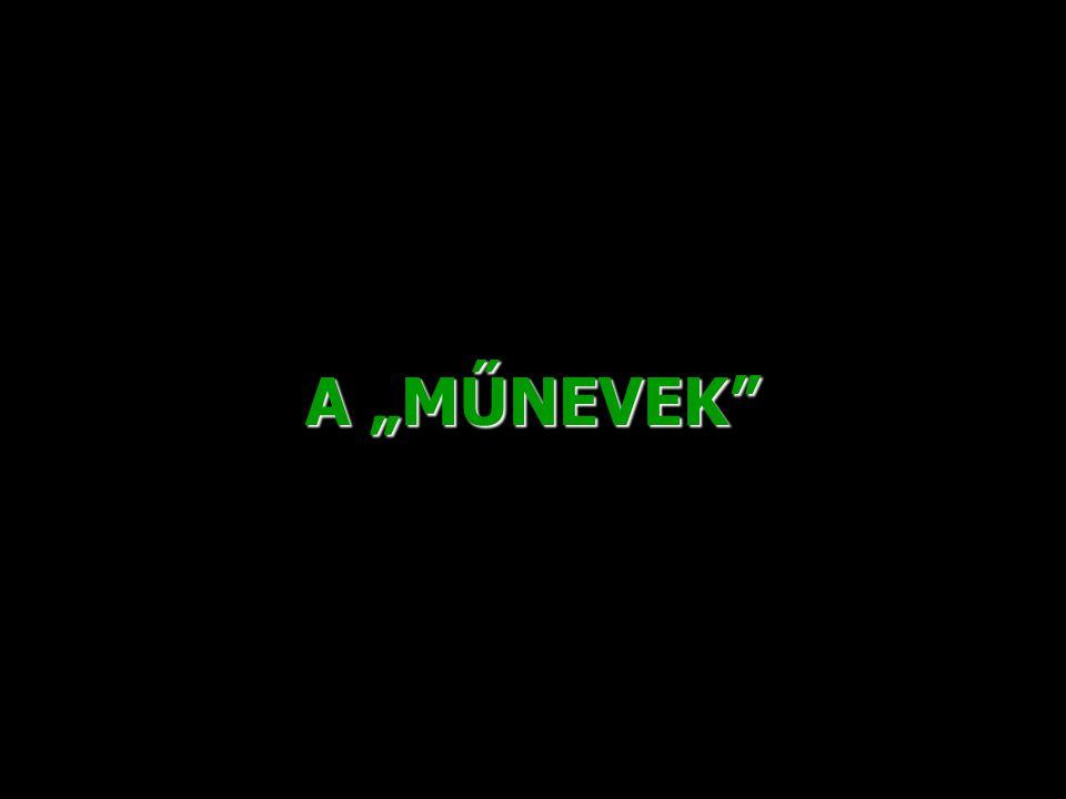 """A """"MŰNEVEK"""