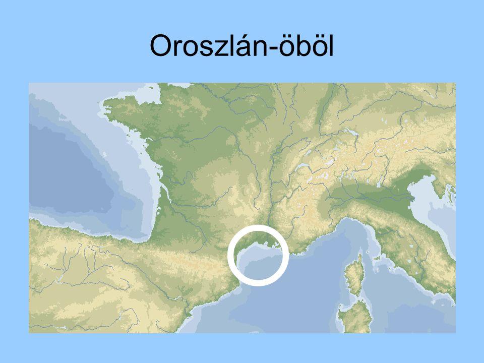 Oroszlán-öböl 