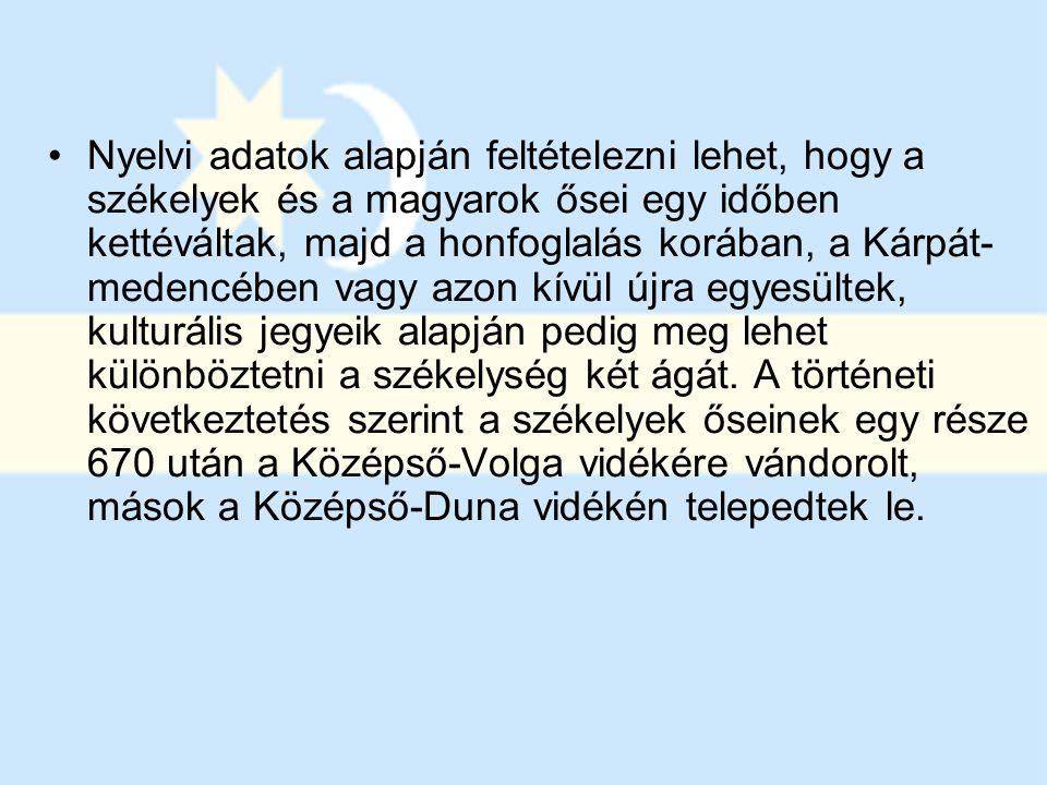 Nyelvi adatok alapján feltételezni lehet, hogy a székelyek és a magyarok ősei egy időben kettéváltak, majd a honfoglalás korában, a Kárpát-medencében vagy azon kívül újra egyesültek, kulturális jegyeik alapján pedig meg lehet különböztetni a székelység két ágát.