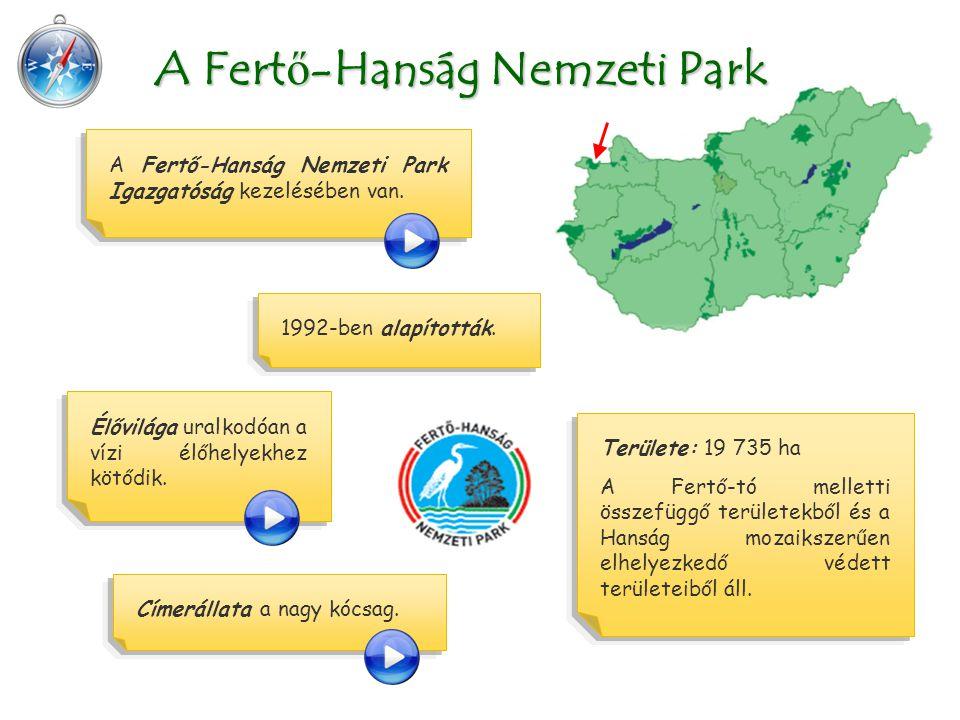 A Fertő-Hanság Nemzeti Park