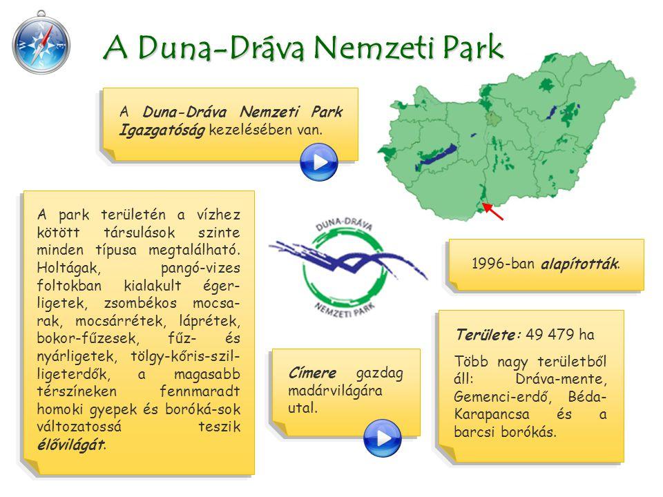 A Duna-Dráva Nemzeti Park