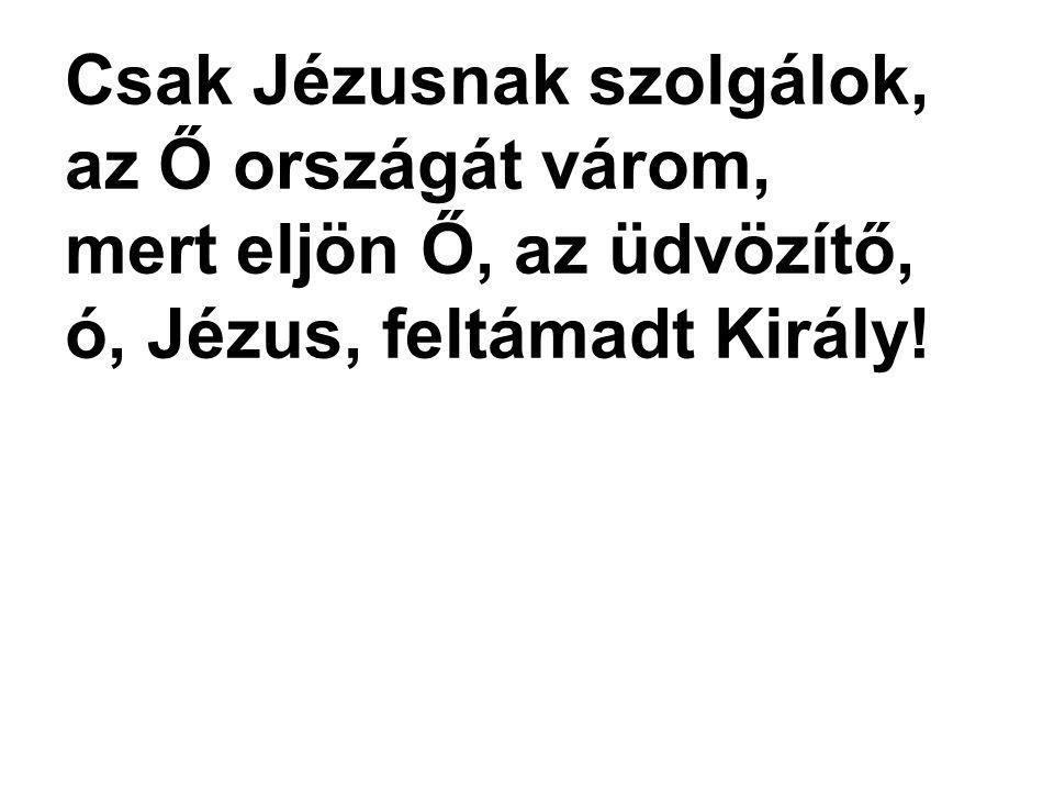 Csak Jézusnak szolgálok, az Ő országát várom,