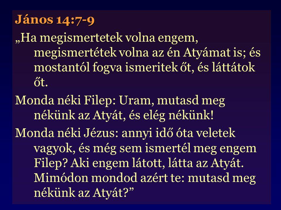 """János 14:7-9 """"Ha megismertetek volna engem, megismertétek volna az én Atyámat is; és mostantól fogva ismeritek őt, és láttátok őt."""