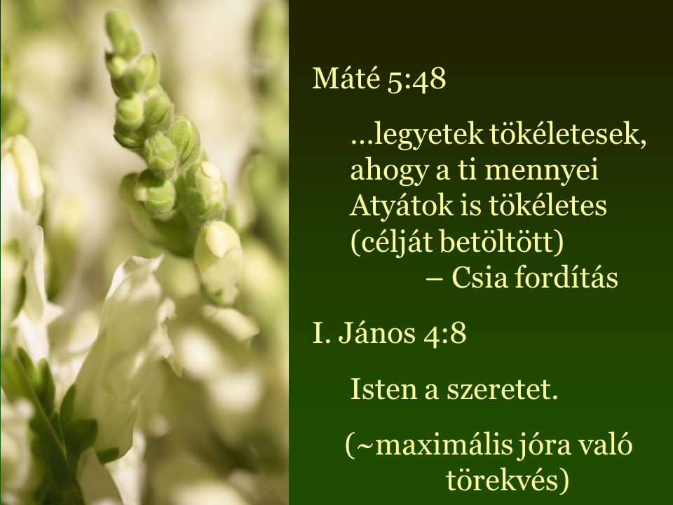 Máté 5:48 …legyetek tökéletesek, ahogy a ti mennyei Atyátok is tökéletes (célját betöltött) – Csia fordítás I.