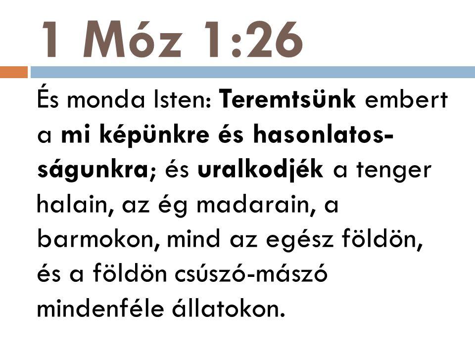 1 Móz 1:26