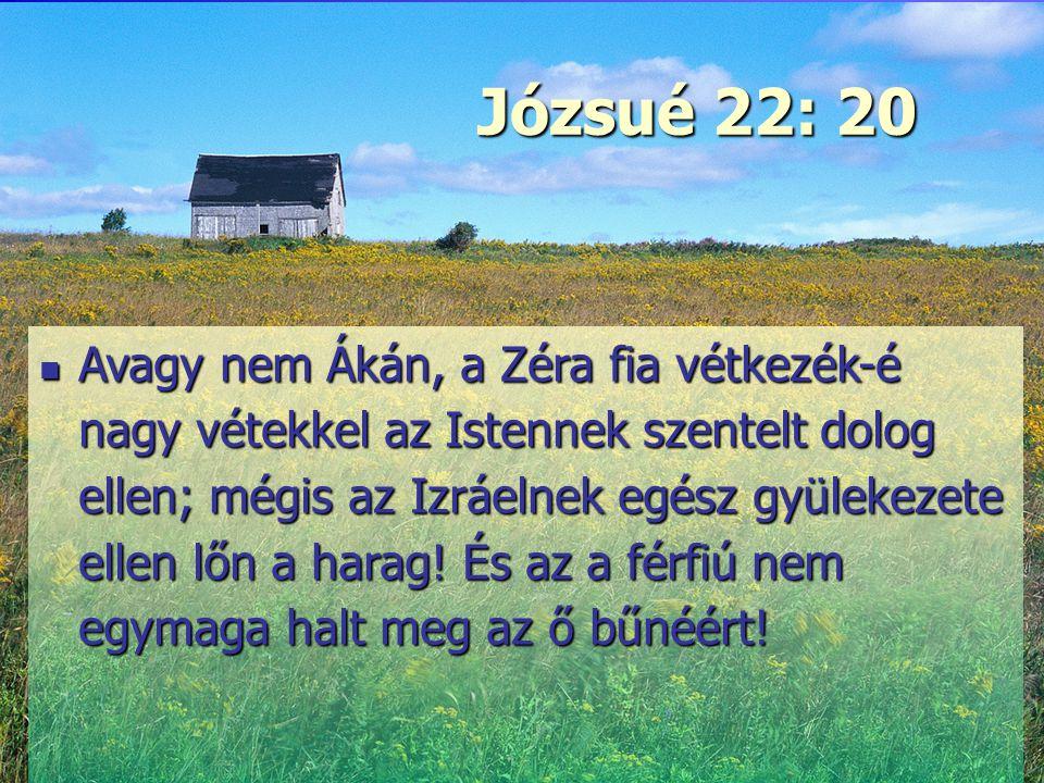 Józsué 22: 20 Erő és szeretet