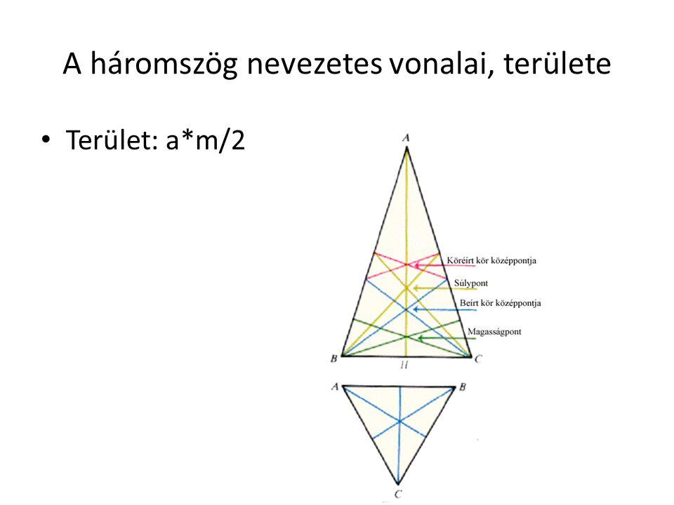 A háromszög nevezetes vonalai, területe
