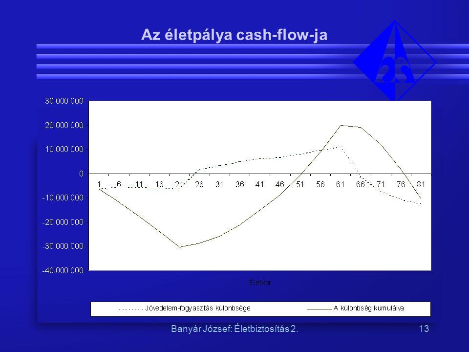 Az életpálya cash-flow-ja