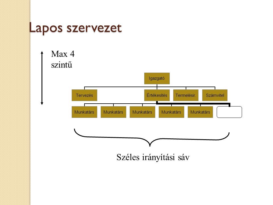 Lapos szervezet Széles irányítási sáv Max 4 szintű