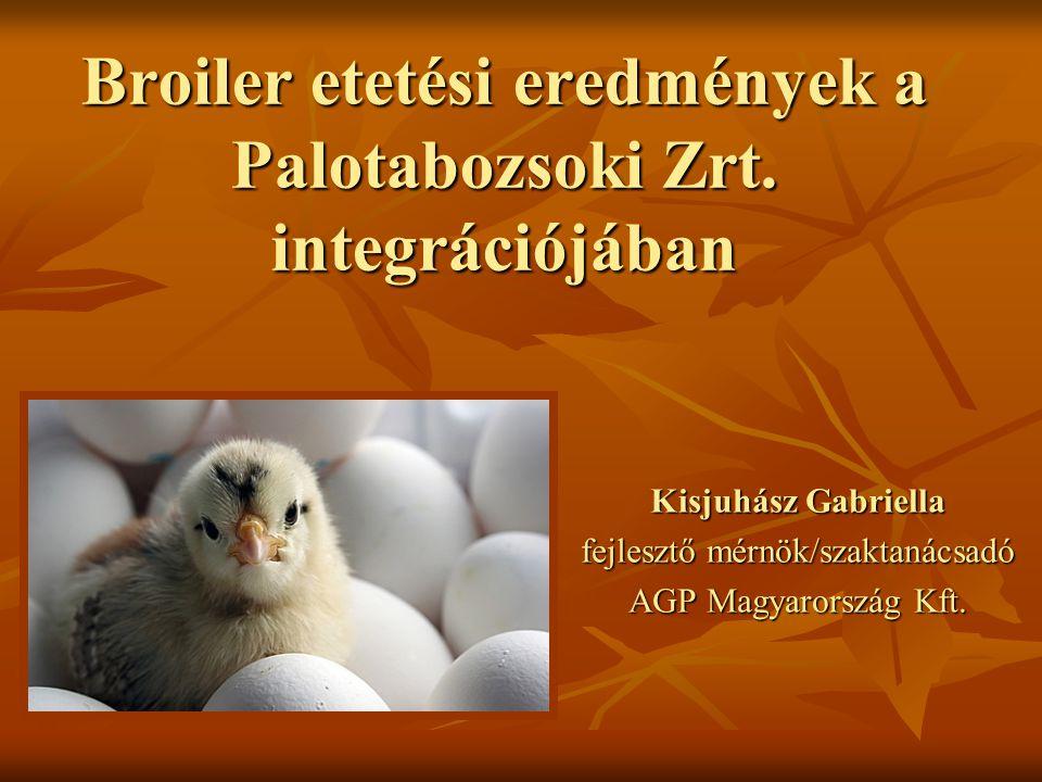 Broiler etetési eredmények a Palotabozsoki Zrt. integrációjában