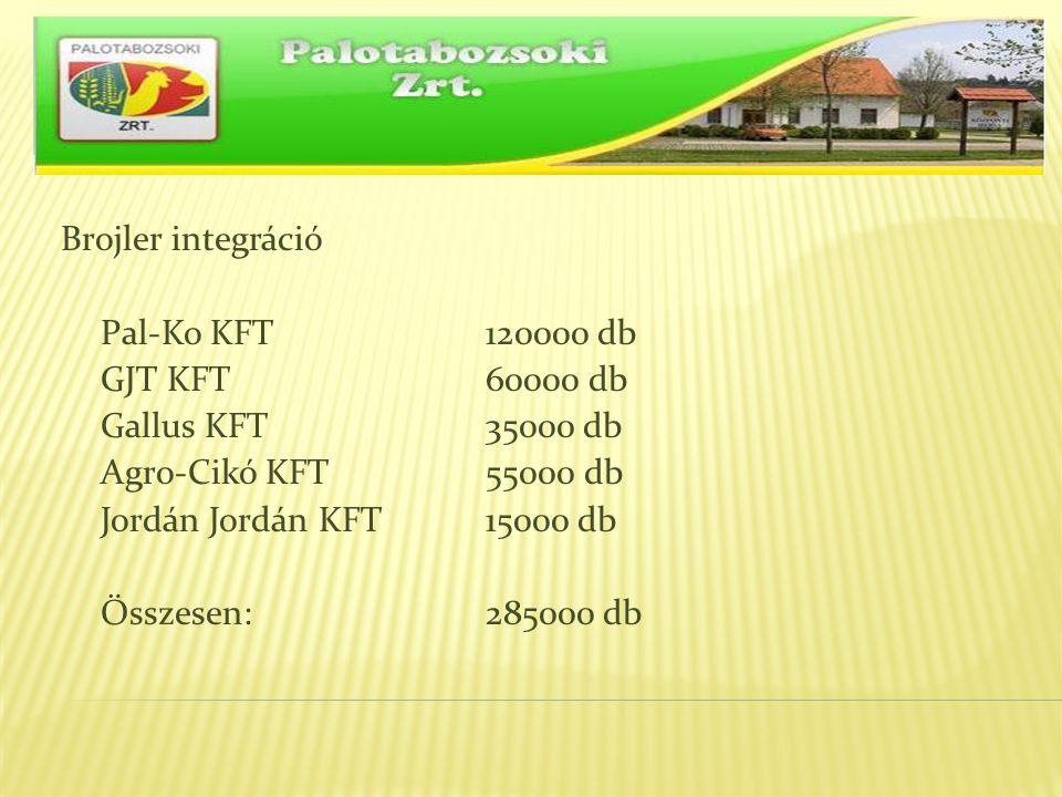 Brojler integráció Pal-Ko KFT 120000 db GJT KFT 60000 db Gallus KFT 35000 db Agro-Cikó KFT 55000 db Jordán Jordán KFT 15000 db Összesen: 285000 db