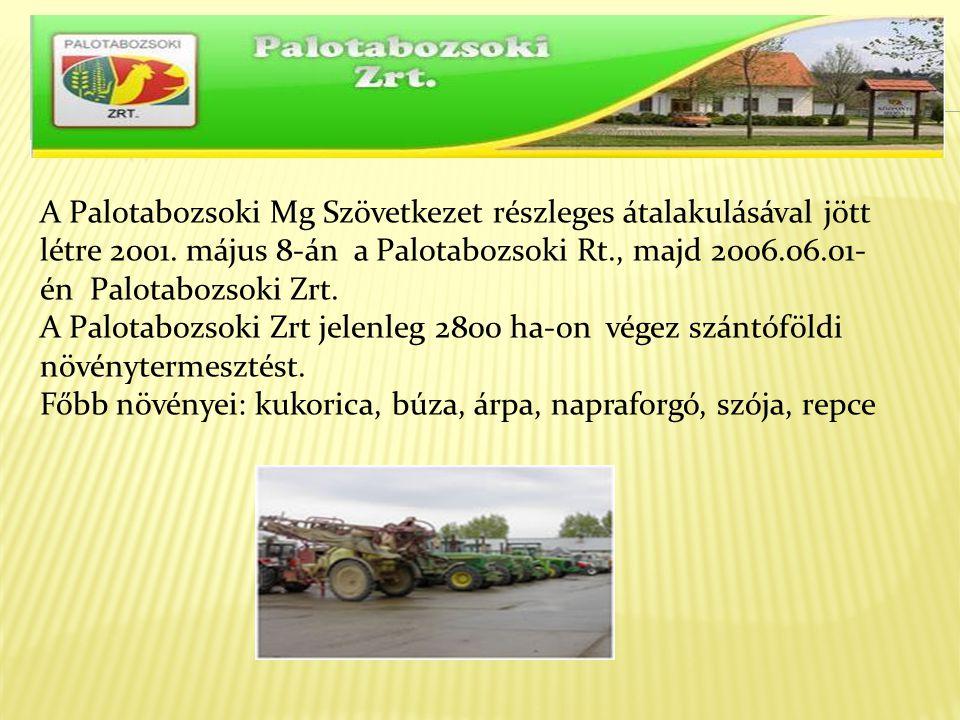 A Palotabozsoki Mg Szövetkezet részleges átalakulásával jött létre 2001. május 8-án a Palotabozsoki Rt., majd 2006.06.01-én Palotabozsoki Zrt.