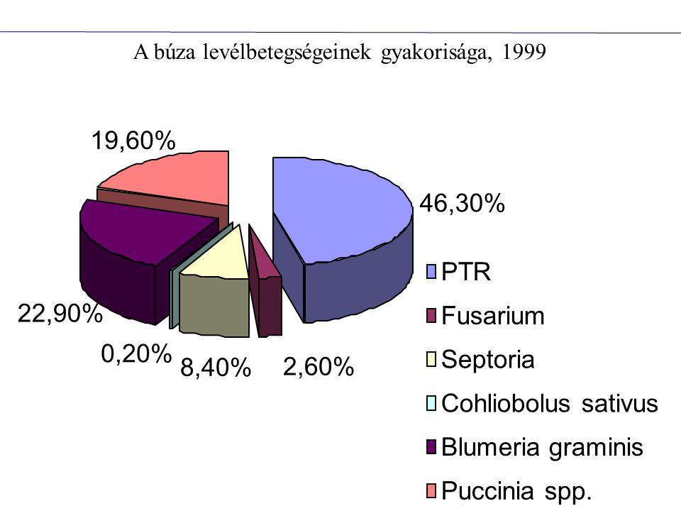 19,60% 46,30% PTR 22,90% Fusarium 0,20% Septoria 8,40% 2,60%