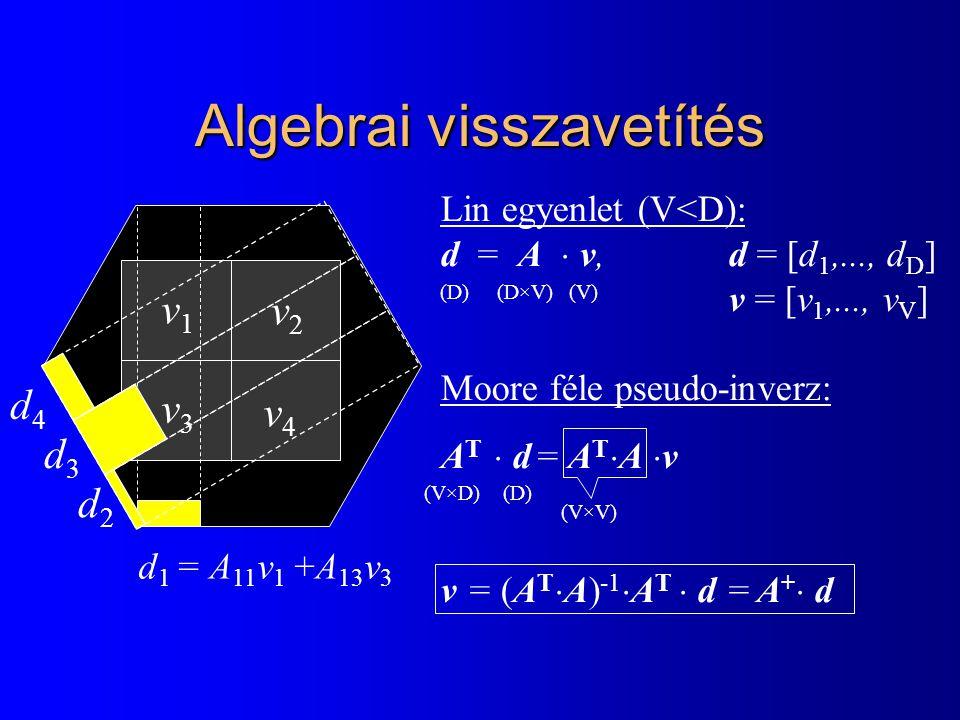 Algebrai visszavetítés