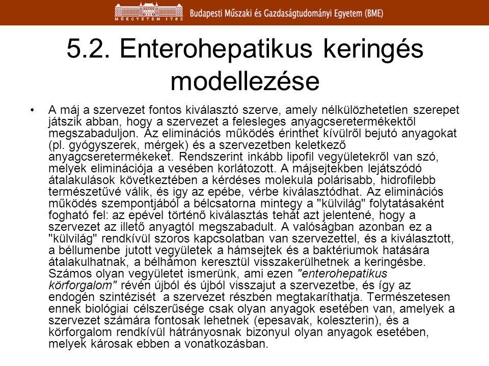 5.2. Enterohepatikus keringés modellezése