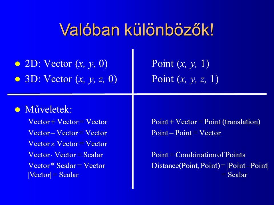 Valóban különbözők! 2D: Vector (x, y, 0) Point (x, y, 1)