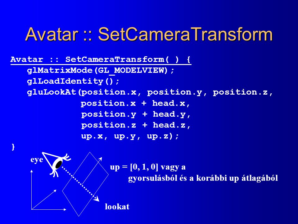 Avatar :: SetCameraTransform