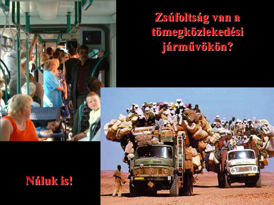 Zsúfoltság van a tömegközlekedési járművökön