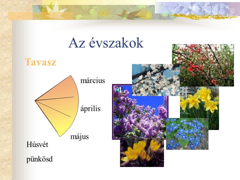Az évszakok Tavasz március április május Húsvét pünkösd