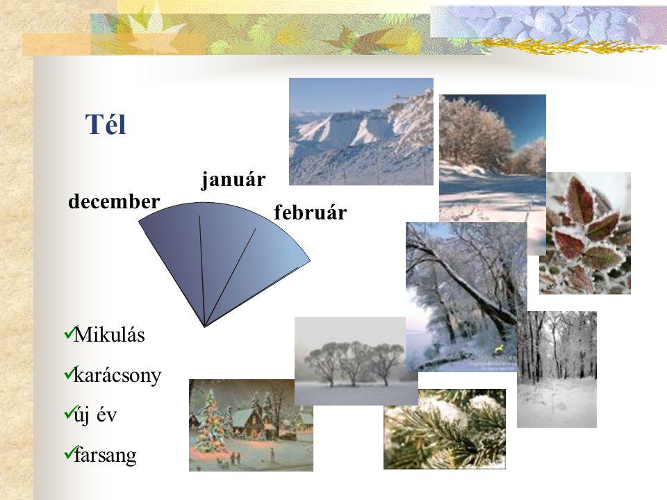Tél január december február Mikulás karácsony új év farsang
