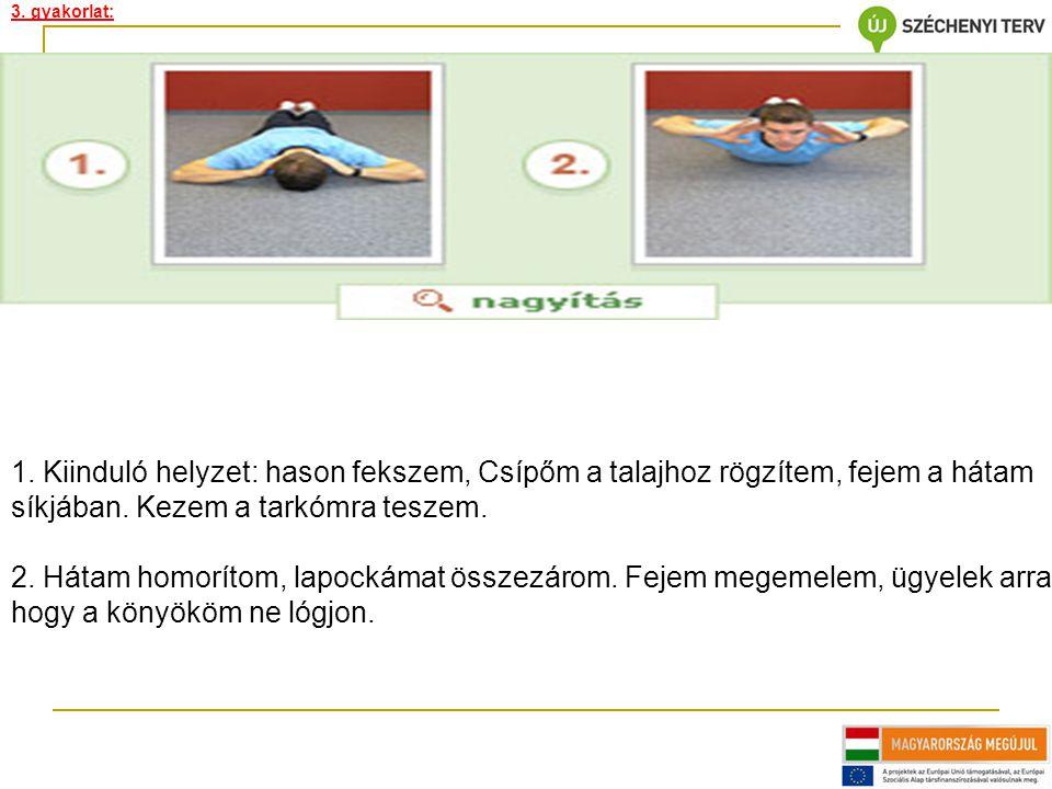 3. gyakorlat:
