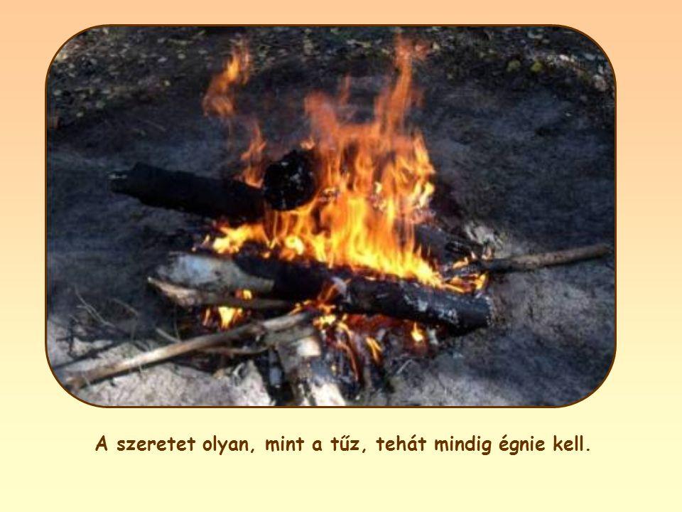 A szeretet olyan, mint a tűz, tehát mindig égnie kell.