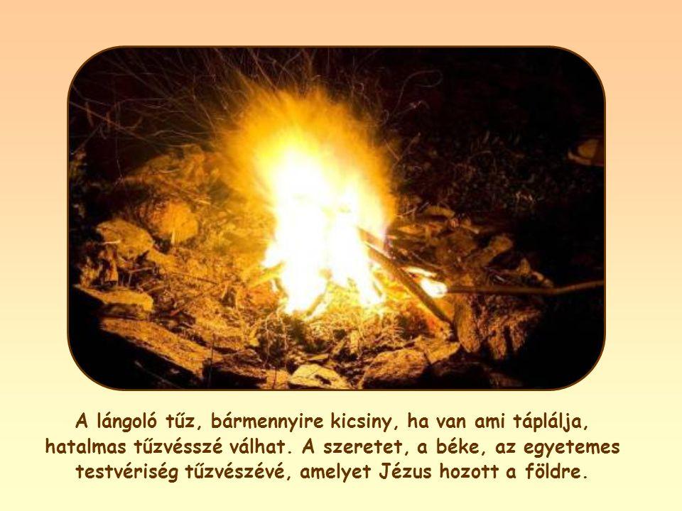 A lángoló tűz, bármennyire kicsiny, ha van ami táplálja, hatalmas tűzvésszé válhat.