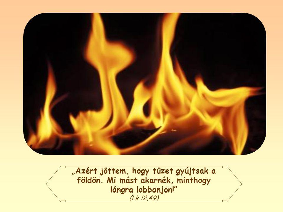 """""""Azért jöttem, hogy tüzet gyújtsak a földön"""