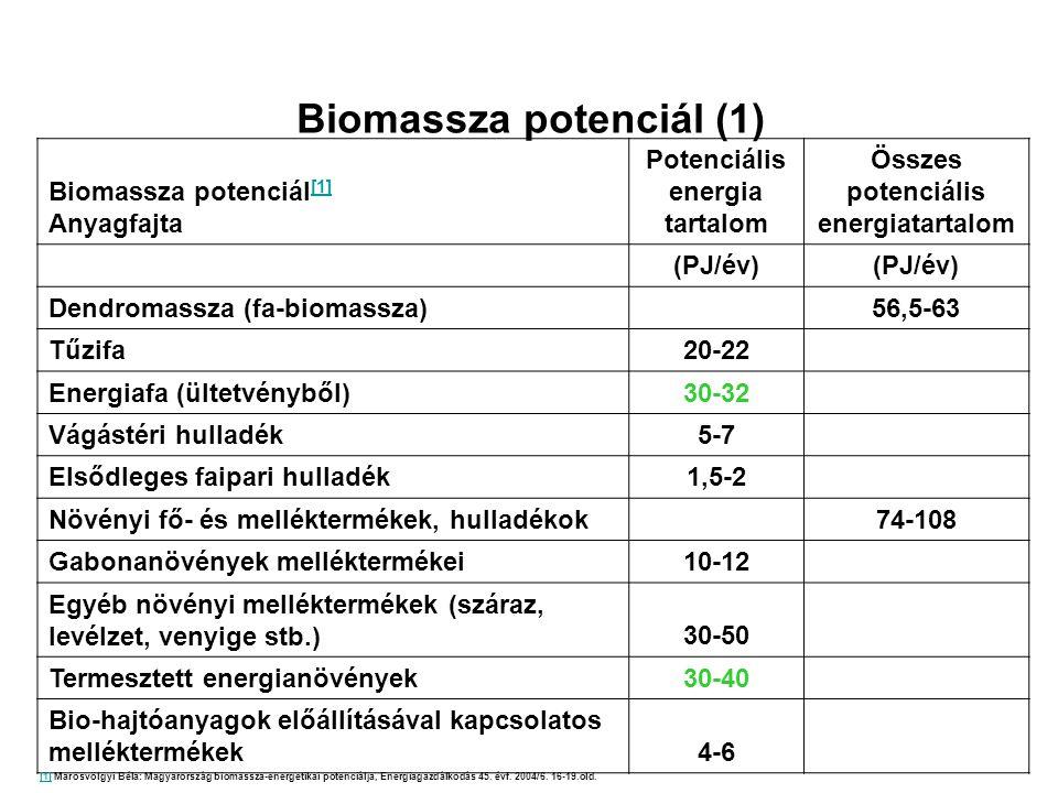 Biomassza potenciál (1)