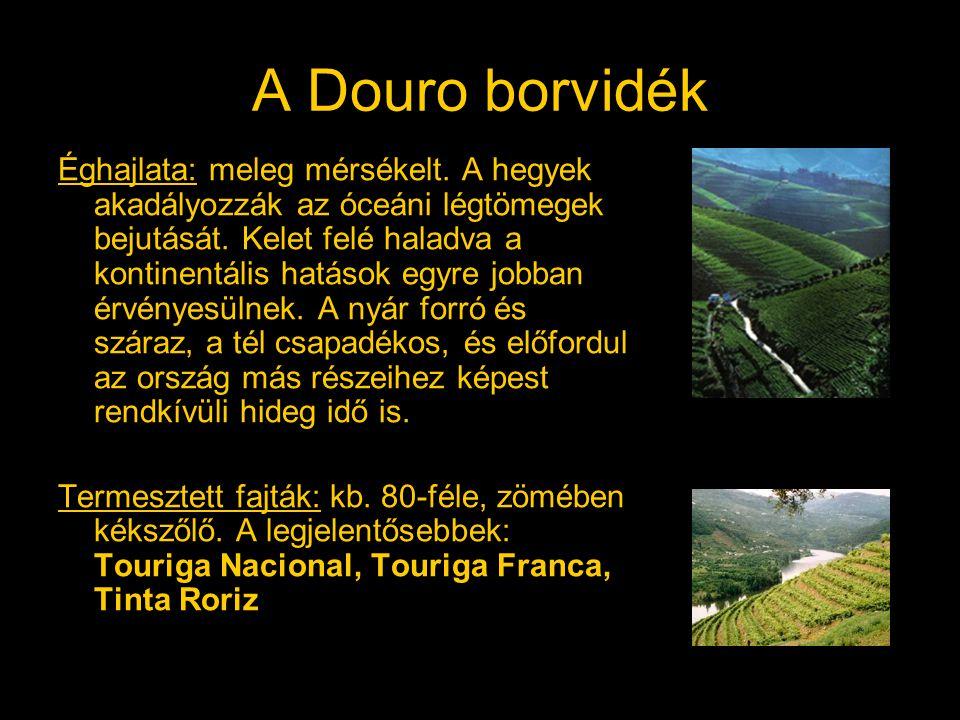 A Douro borvidék