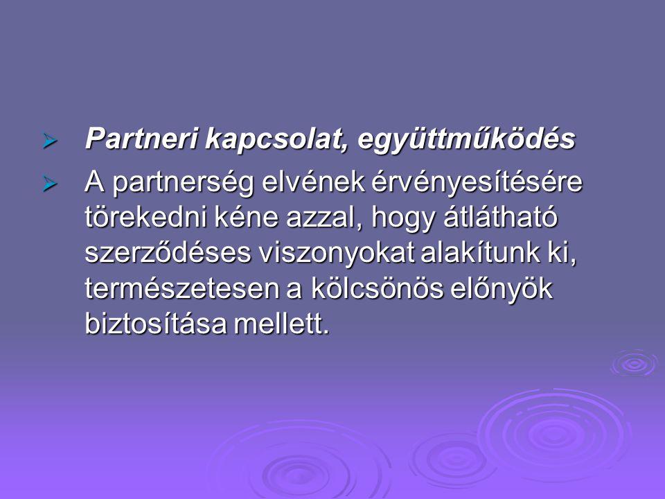 Partneri kapcsolat, együttműködés