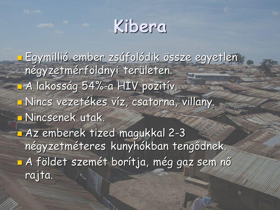 Kibera Egymillió ember zsúfolódik össze egyetlen négyzetmérföldnyi területen. A lakosság 54%-a HIV pozitív.