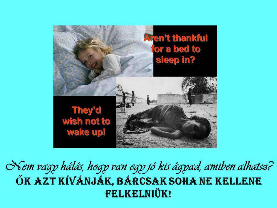 Nem vagy hálás, hogy van egy jó kis ágyad, amiben alhatsz