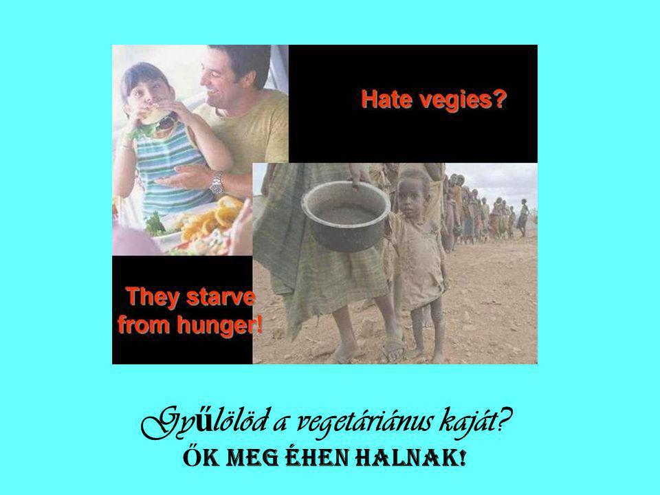 Gyűlölöd a vegetáriánus kaját ŐK MEG ÉHEN HALNAK!
