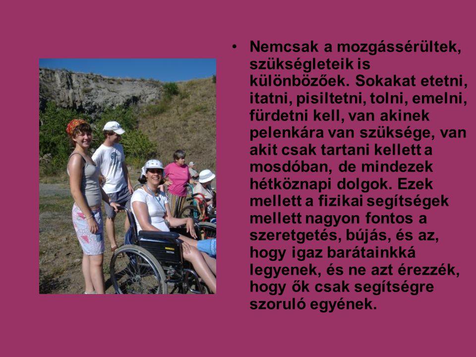 Nemcsak a mozgássérültek, szükségleteik is különbözőek