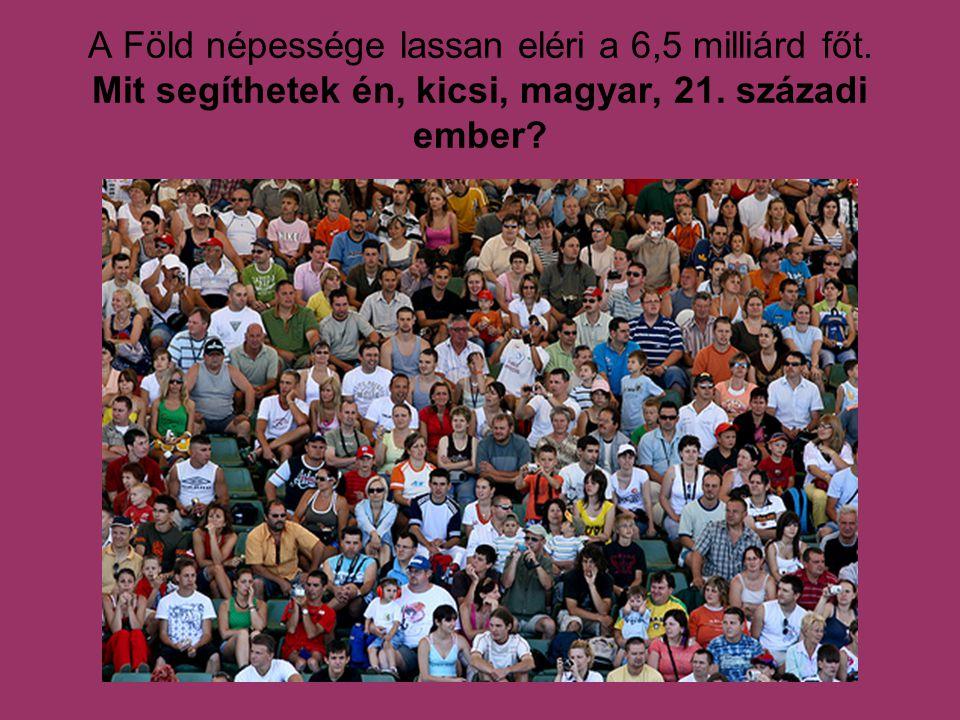 A Föld népessége lassan eléri a 6,5 milliárd főt